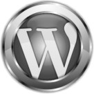 wordpress customization development service company in delhi ncr